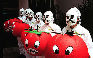 GE Tomato Action - Greece (1997). © Greenpeace / Mihalis Karayannis