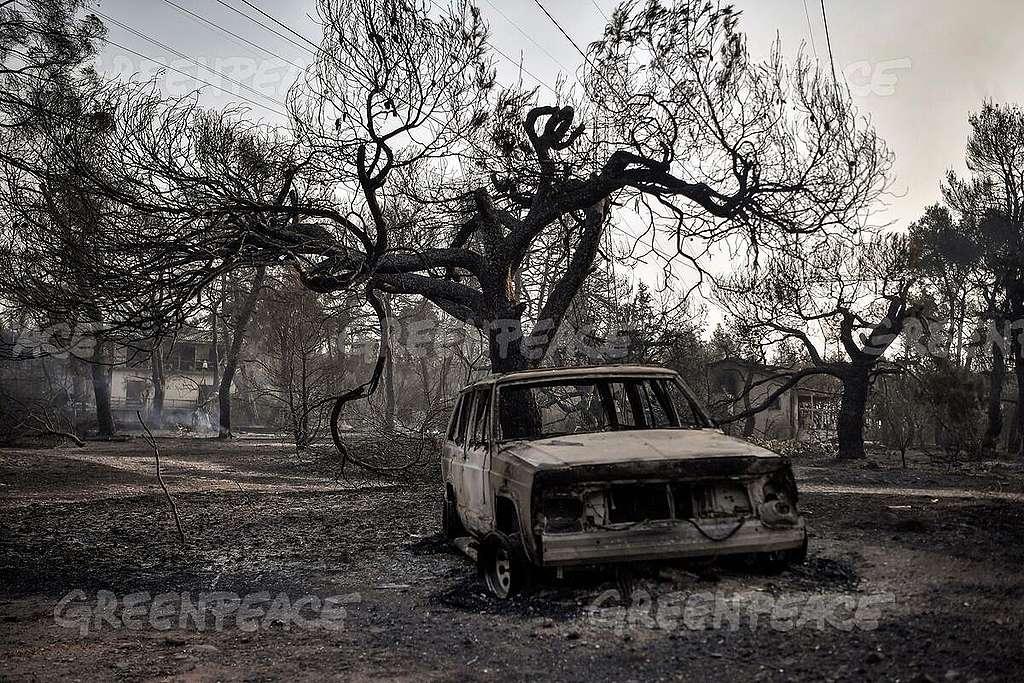 GREECE-FIRE. LOUISA GOULIAMAKI / Greenpeace