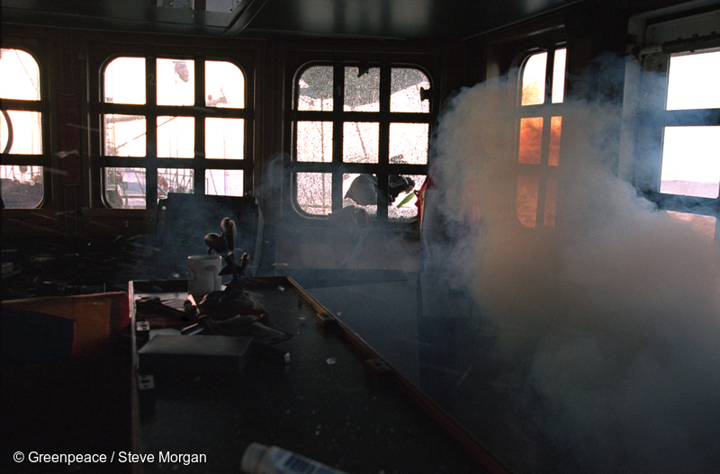 Armed French commandos smashing windows on the bridge and throwing in tear gas grenades during the storming of the Rainbow Warrior