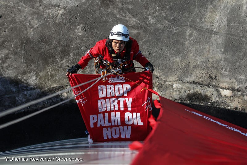 Activist carries a banner as she hangs on the rope during the action in Bitung, North Sulawesi. Thirty Greenpeace activists from Indonesia, Malaysia, the Philippines, Thailand, UK, France and Australia occupy a palm oil refinery belonging to Wilmar International, the world's largest palm oil trader and supplies major brands including Colgate, Mondelez, Nestlé and Unilever destroying rainforests in Kalimantan and Papua, Indonesia.