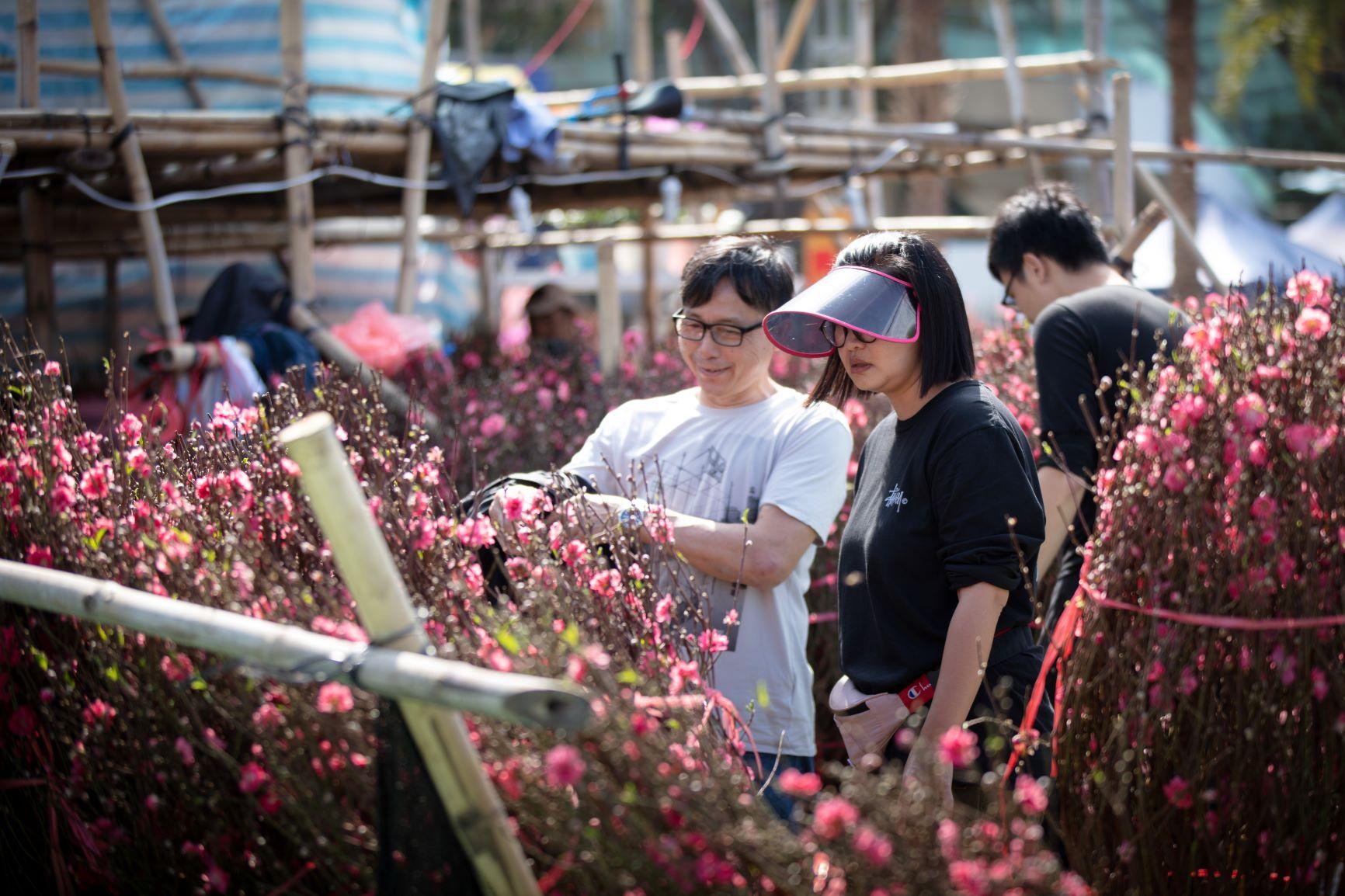 2020年維園年宵花市,天氣如初夏。 © Tse Pak Chai/Greenpeace