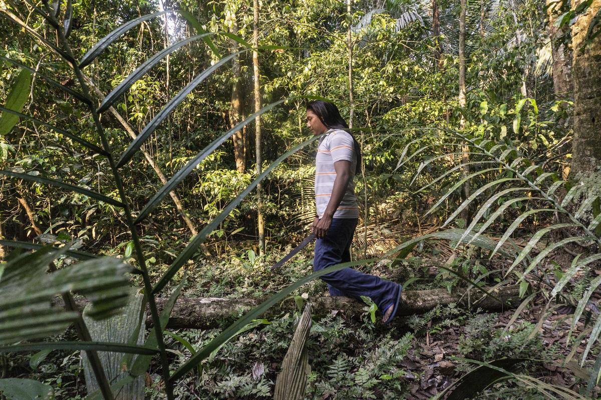 守護森林在亞馬遜是場戰役,不要讓亞馬遜原住民孤單上路。(André Karipuna, Cacique 是 Karipuna people族人的首領。)© Rogério Assis / Greenpeace