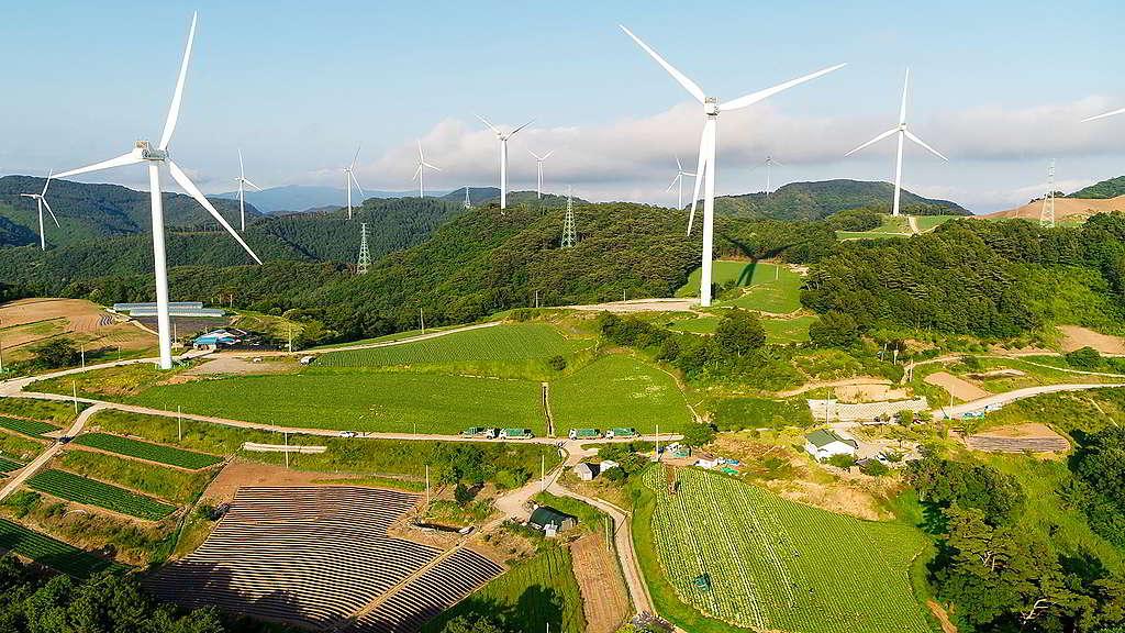 位於慶尚北道英陽郡的韓國第三大風電廠,預計一年可製造 134 吉瓦時 (GWh) 的電力。 © Greenpeace