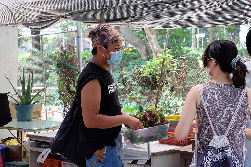 自備食物盒到農墟選購新鮮本地菜,滿載而歸! © Greenpeace
