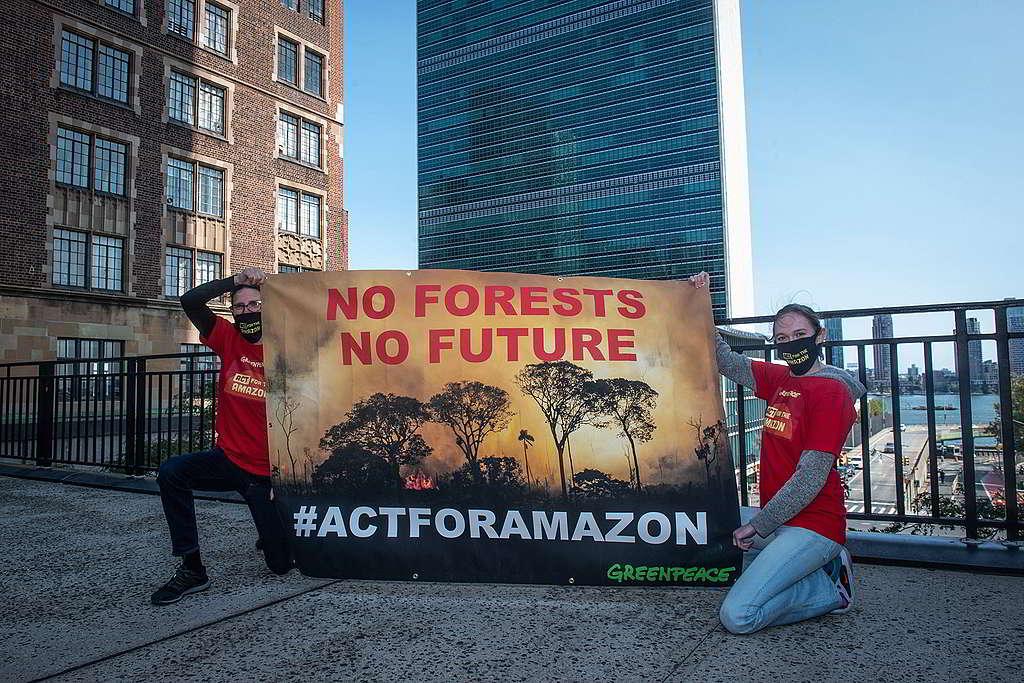 巴西總統博索納羅於聯合國大會發言期間,綠色和平美國辦公室行動者在會場外拉起「沒有森林就沒有未來」橫額,促請立即採取行動遏止亞馬遜大火。 © Tracie Williams / Greenpeace