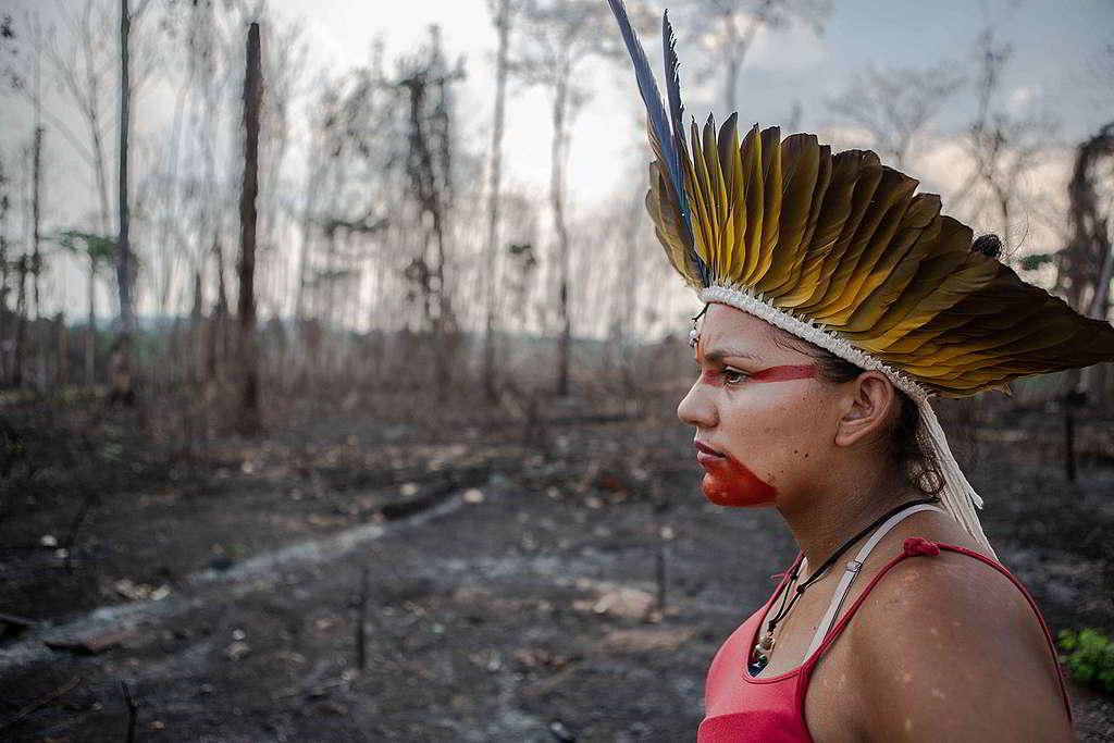 巴西阿克里州一名胡利古因(Huni Kuin)族人,正檢視家園旁森林被破壞的情況。 © David Tesinsky / Greenpeace
