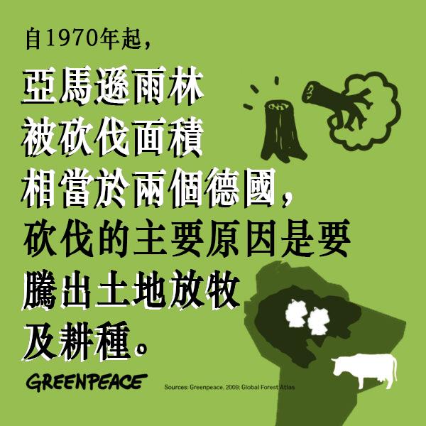 自1970年起,亞馬遜雨林被砍伐面積相當於兩個德國,砍伐的主要原因是騰出土地放牧及耕種。畜牧業成為毀林的一大元兇。© Greenpeace