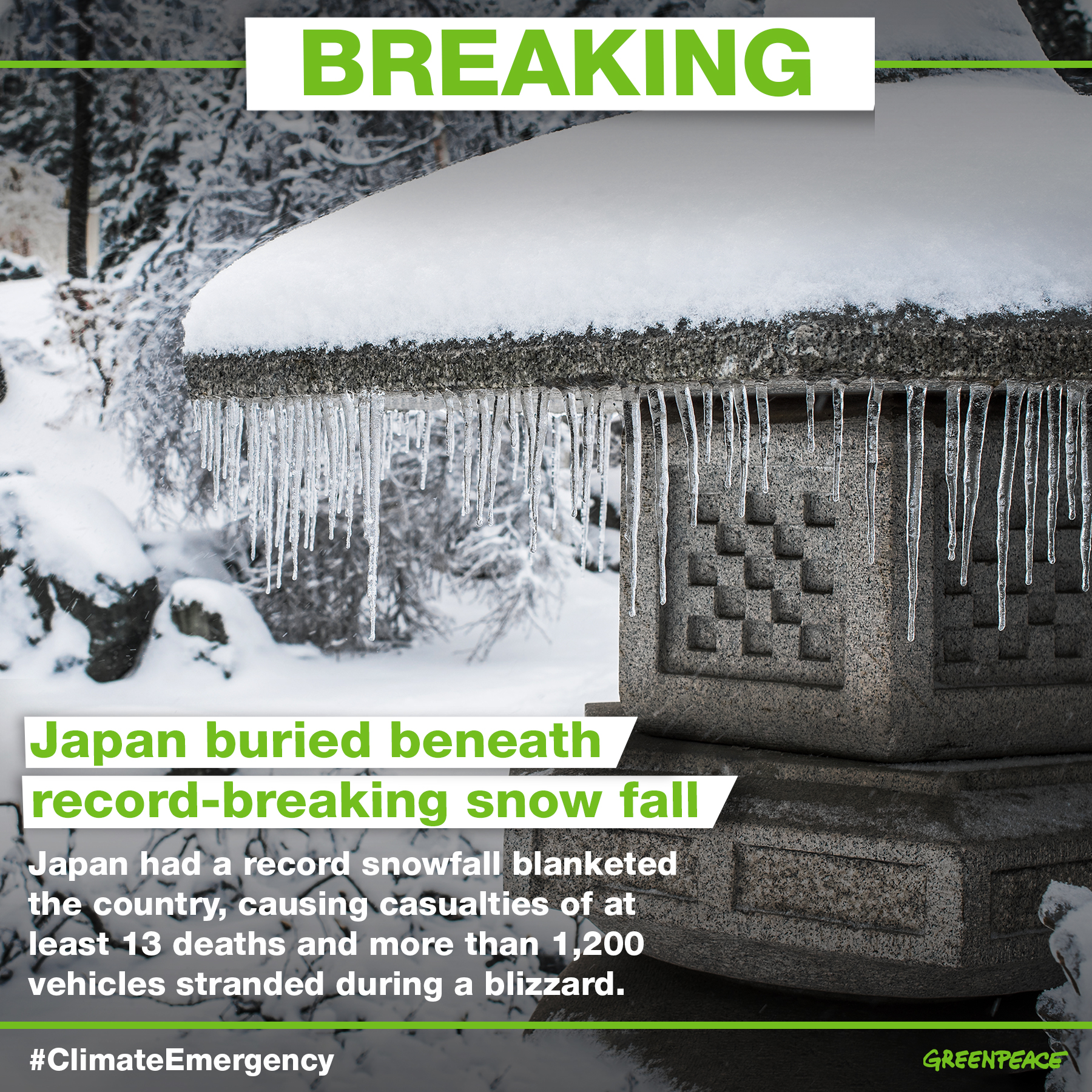 日本寒流降雪破紀錄,造成至少13人死亡、數百人受傷、上千車輛受困。© Greenpeace