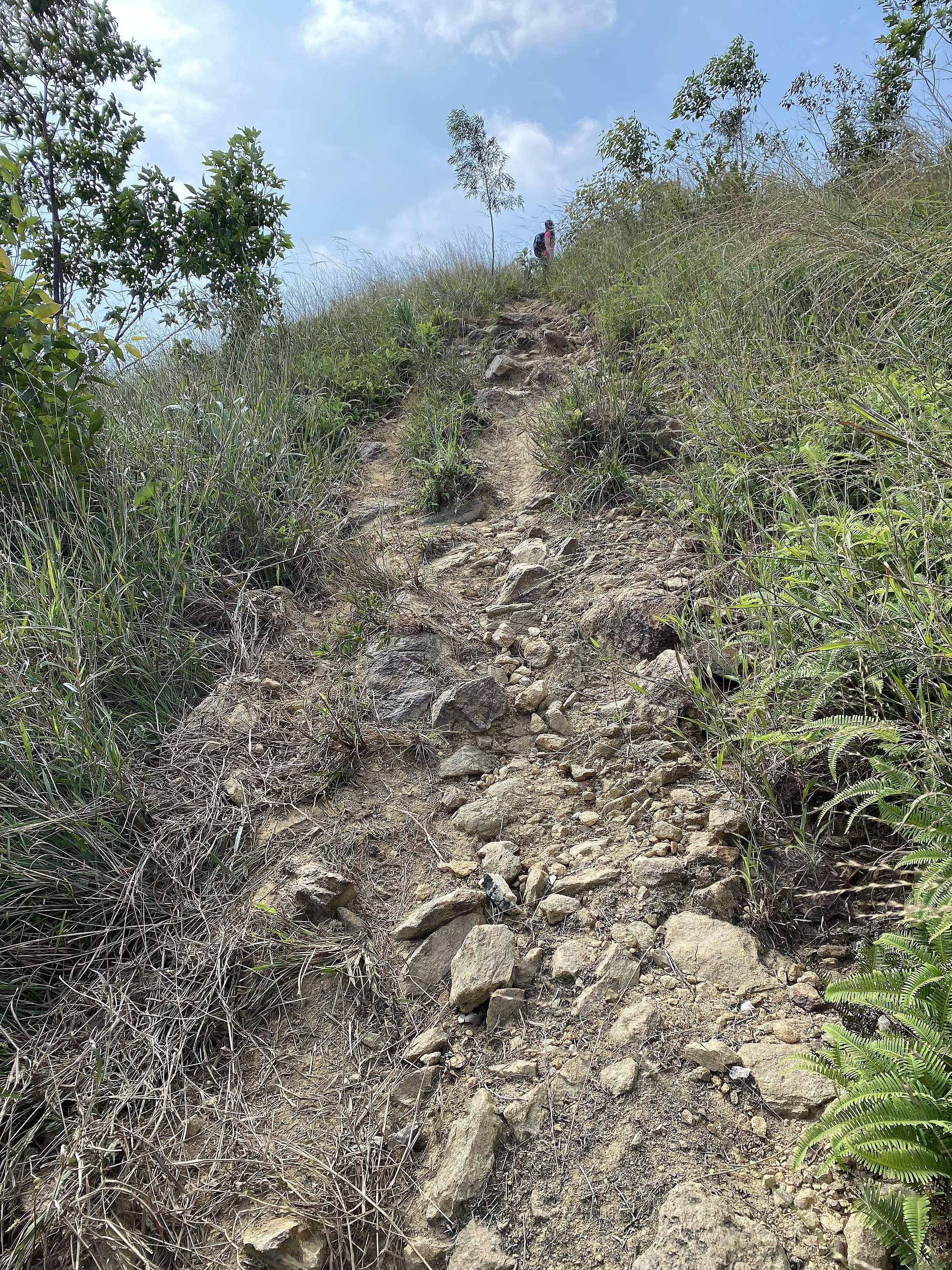 從這邊登山幾乎是一直上坡至山頂,其中一部份斜度約30度,注意如雨後路可能會變成濕滑的泥濘。© 香港山女