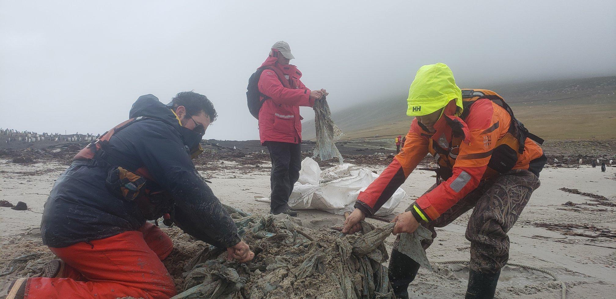嚮導和遊客在佈滿企鵝的沙灘上,一起清除塑膠垃圾。© Eric Wong / Greenpeace