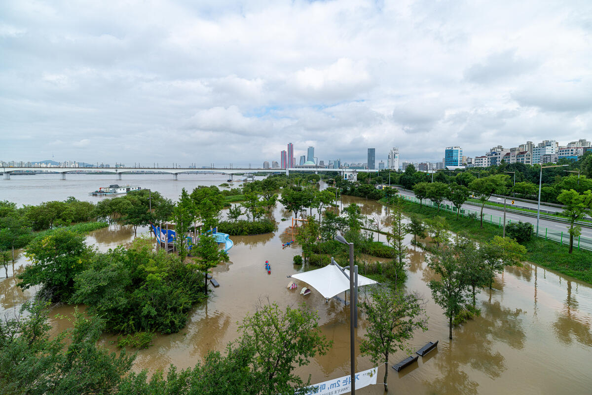 氣候危機令極端天氣更見頻繁,2020年夏季韓國持續下了超過46天的大暴雨,地標漢江旁的公園和道路都被洪水淹沒。© Sungwoo Lee / Greenpeace