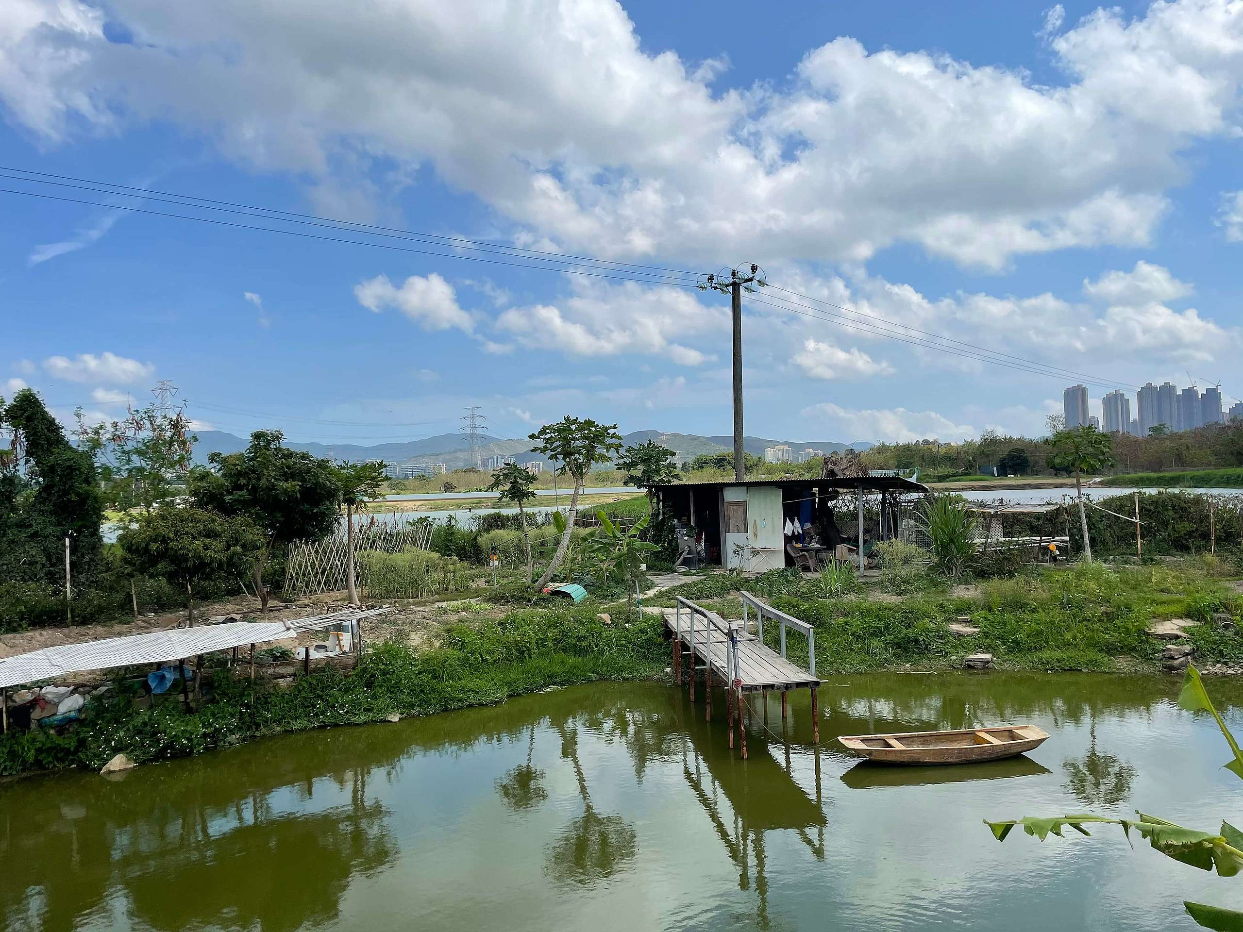 單車徑兩旁有不少農田、魚塘和濕地,是都市人較少接觸的田園風光。©ABCAT / Greenpeace