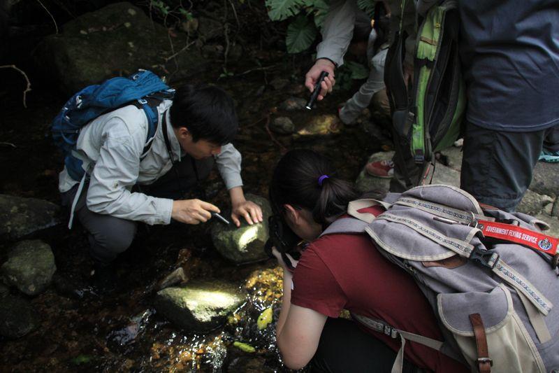目前香港在學校中推行的環境教育,很視乎學校的意願和資源,學生缺少走到戶外投入大自然的機會,是以馬昀祺一直堅持推動戶外環境教育。(照片由受訪者提供)