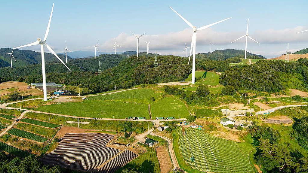 位於韓國慶尚北道英陽郡的風電場,是韓國第三大風電場,預計每年可產生134百萬度的可再生能源電力。© Greenpeace