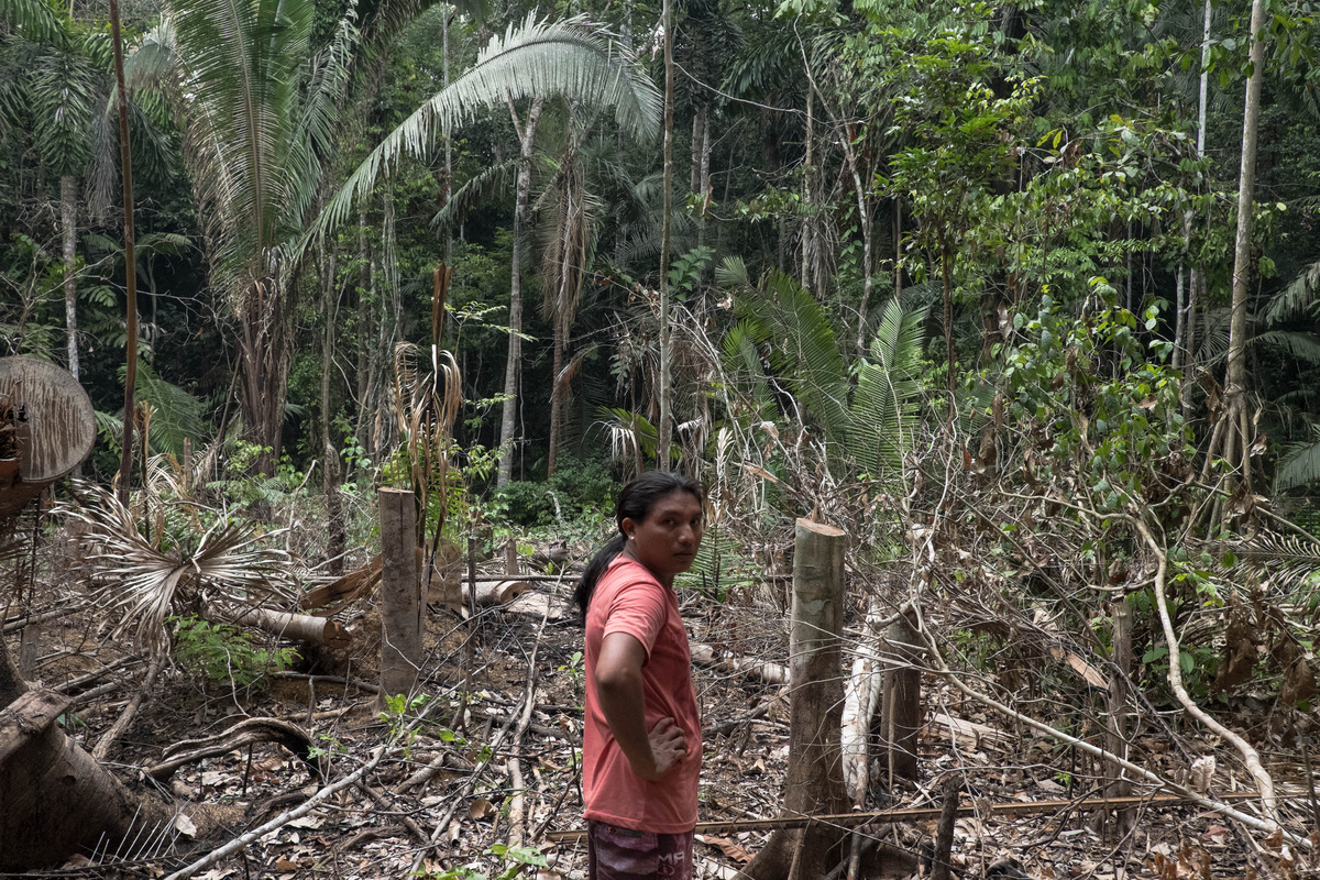 Andre Karipuna在一次巡邏中,發現保護區內的森林遭非法砍伐。在亞馬遜眾多原住民部落中,Karipuna地區是毀林率最高地方之一。 © Tommaso Protti / Greenpeace