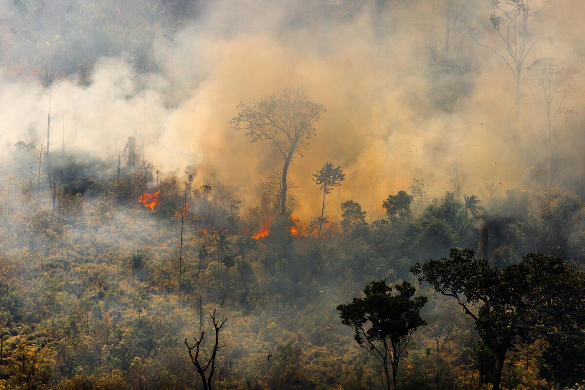 2020年8月綠色和平進行年度亞馬遜雨林飛行監測,紀錄到帕拉州(Pará)Novo Progresso火場情況,這裏屬於Prodes(2017-2018)系統的警告熱點。 © Christian Braga / Greenpeace