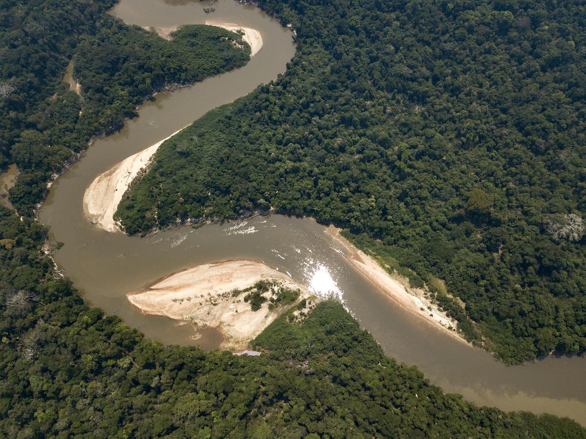位於巴西朗多尼亞州的Karipuna原住民土地,橫跨新馬莫雷和韋柳港直轄市,亦鄰近傑西帕拉納河和福爾摩沙河的交匯點。© Rogério Assis / Greenpeace