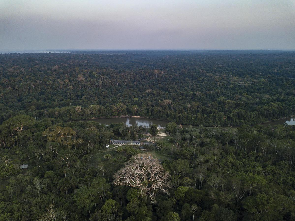 Karipuna原住民村落名為Panorama,而領土東北面就是傑西帕拉納河畔。 © Rogério Assis / Greenpeace
