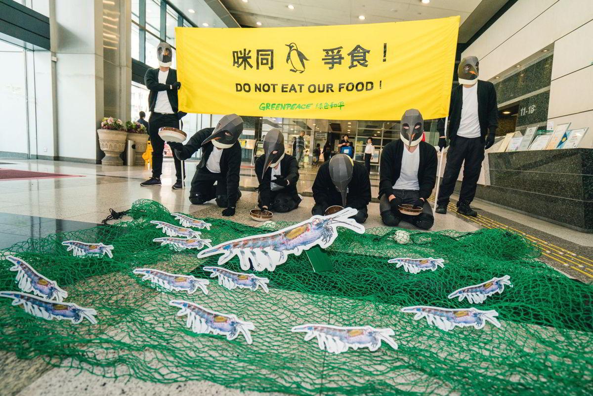 綠色和平香港辦公室2018年響應「守護南極」項目:化身企鵝的行動者到漁護署請願,促請當局增配人手及資源履行《南極海洋生物資源養護公約》。 © Greenpeace / Patrick Cho