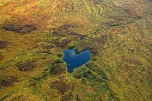 Tundra in Alaska. © Markus Mauthe / Greenpeace