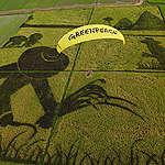 Kiderült: a magyar kormánynak az agráripari óriáscégek érdekei számítanak, nem az emberek egészsége