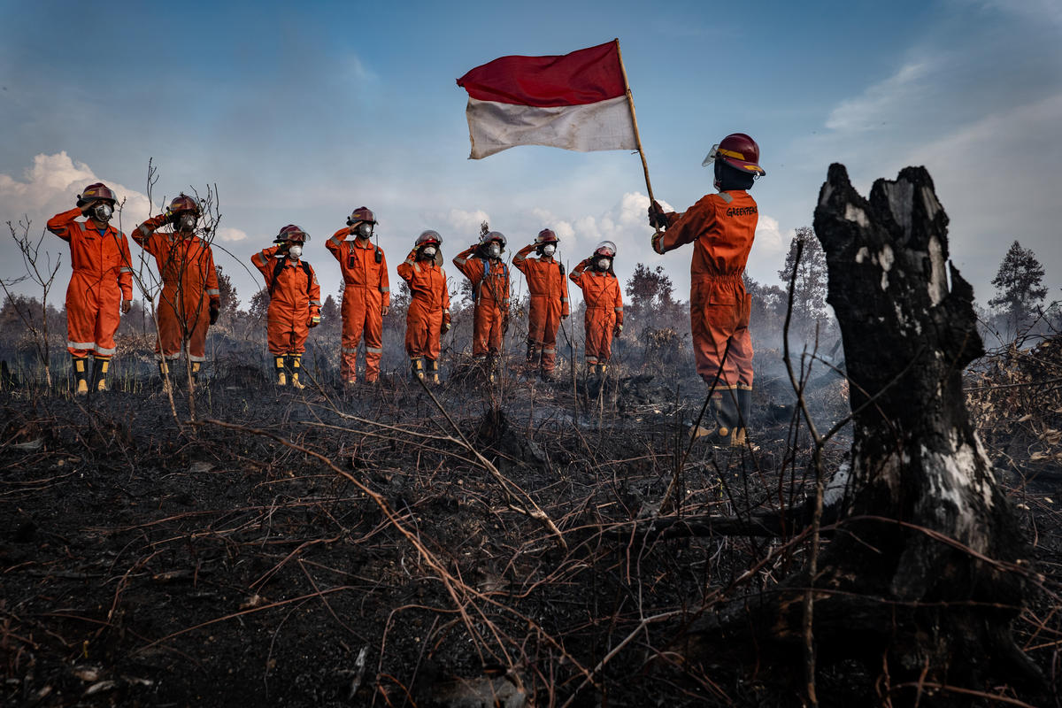 Forest Fires in Central Kalimantan. © Ulet Ifansasti / Greenpeace