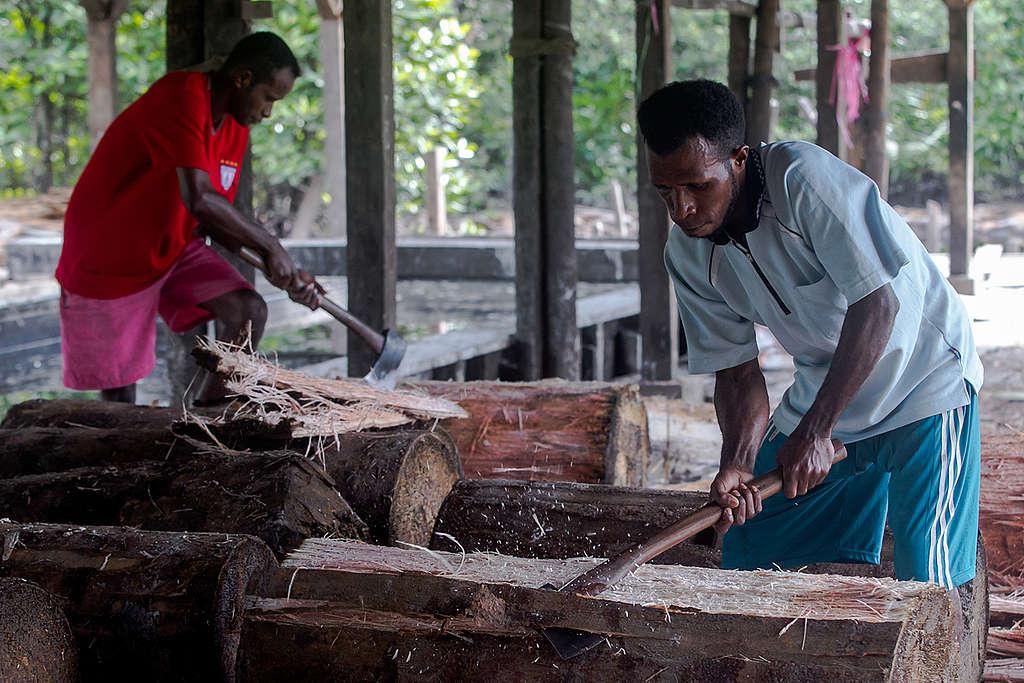 Papuans Peeling Sago Trees in Sungai Tohor. © Fully Syafi / Greenpeace