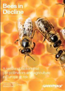 Bees In Decline © Greenpeace / Pieter Boer
