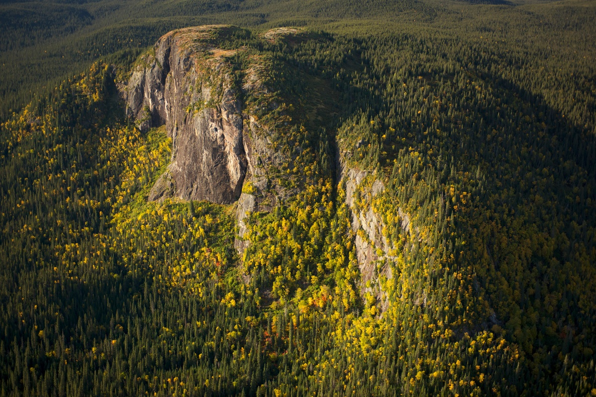 Boreal Forest - Montagnes Blanches, Quebec © Markus Mauthe / Greenpeace