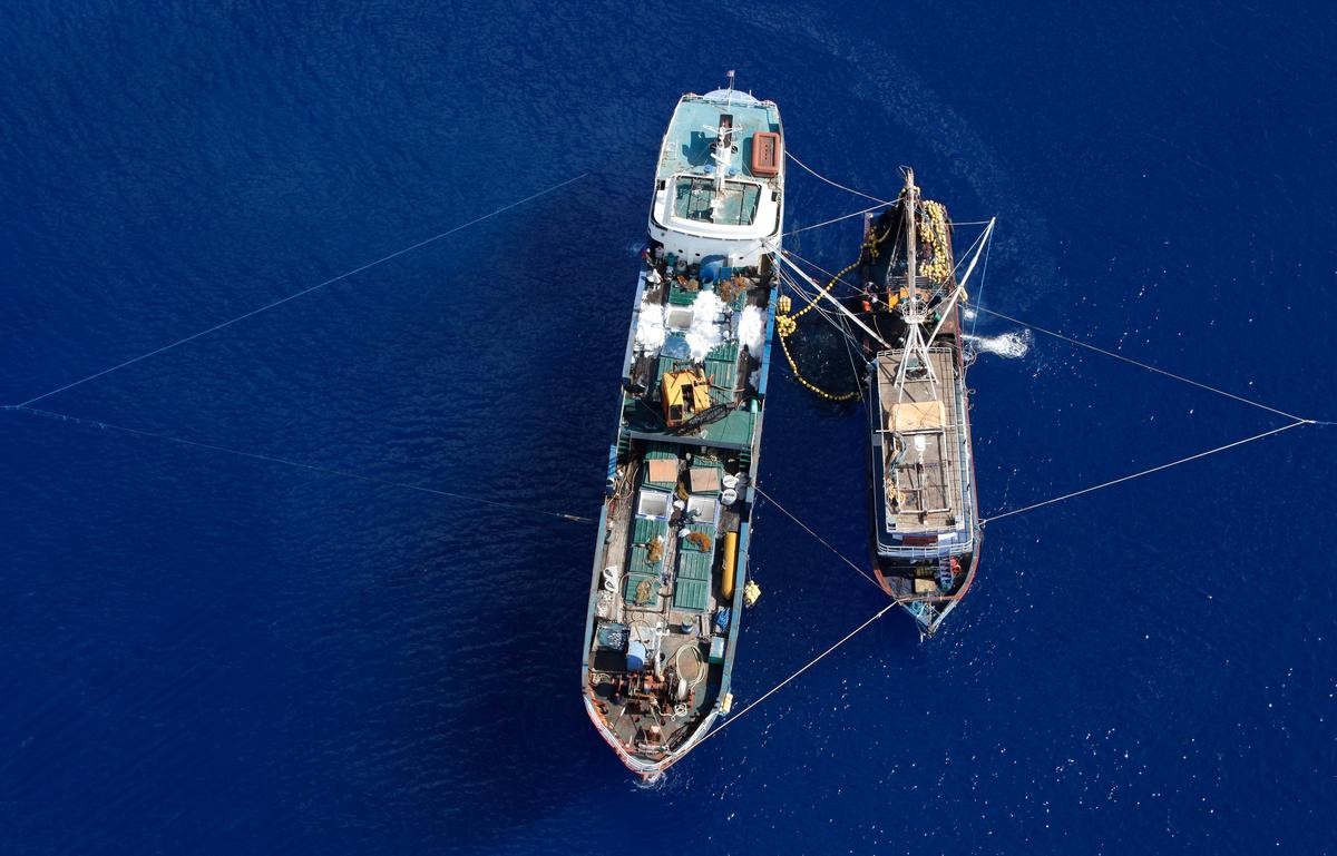 Illegal Purse Seine Fishing Vessel © Alex Hofford / Greenpeace