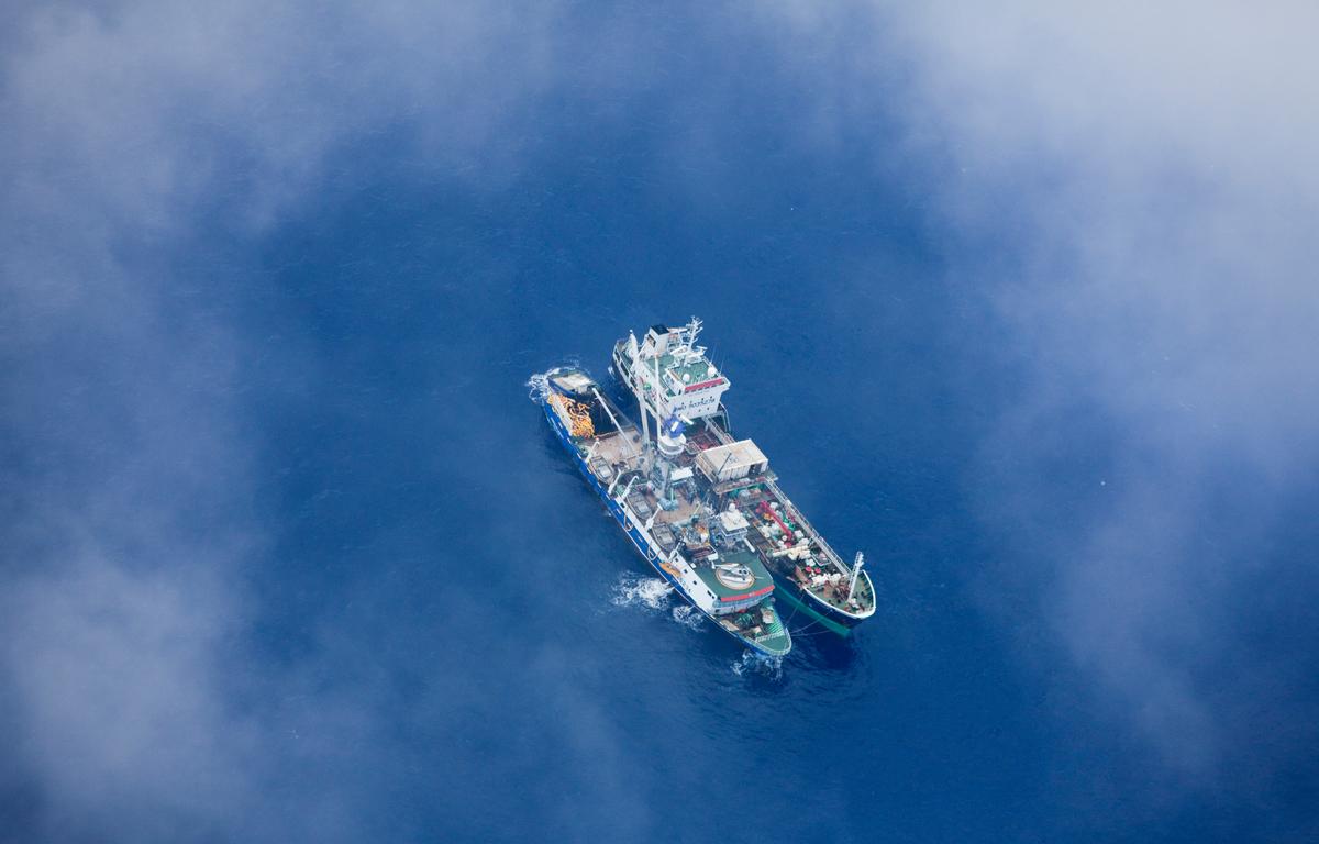 Fishing Vessels in the Pacific Ocean © Greenpeace / Paul Hilton
