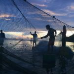 Local Fishermen Choose Sustainable Fishing Practices in Thailand © Biel Calderon / Greenpeace