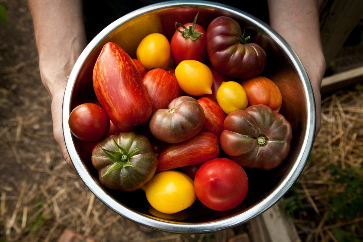 Produce from an Ecological Farm in Bulgaria © Ivan Donchev / Greenpeace
