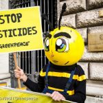 Great news for bees – time to say goodbye to fipronil! #SOSbees