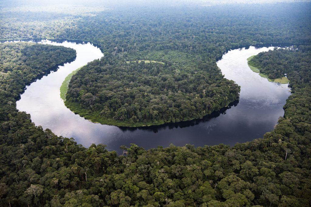 Monboyo River and Peatland Forest in DRC © Daniel Beltrá / Greenpeace