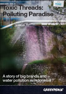 Toxic Threads: Polluting Paradise