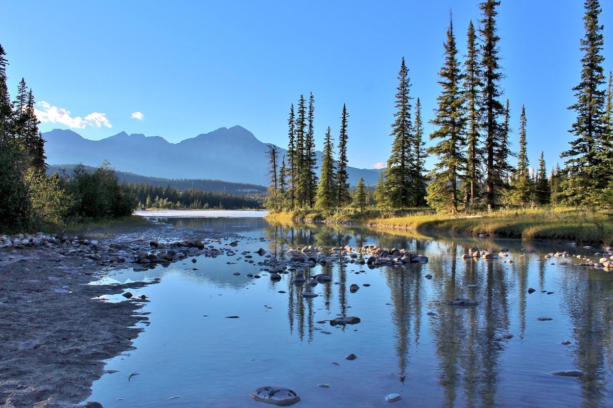 Jasper National Park in Canada © Greenpeace