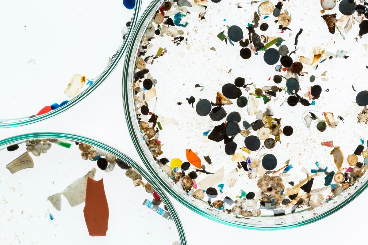 Microplastics from German Rivers © Fred Dott / Greenpeace