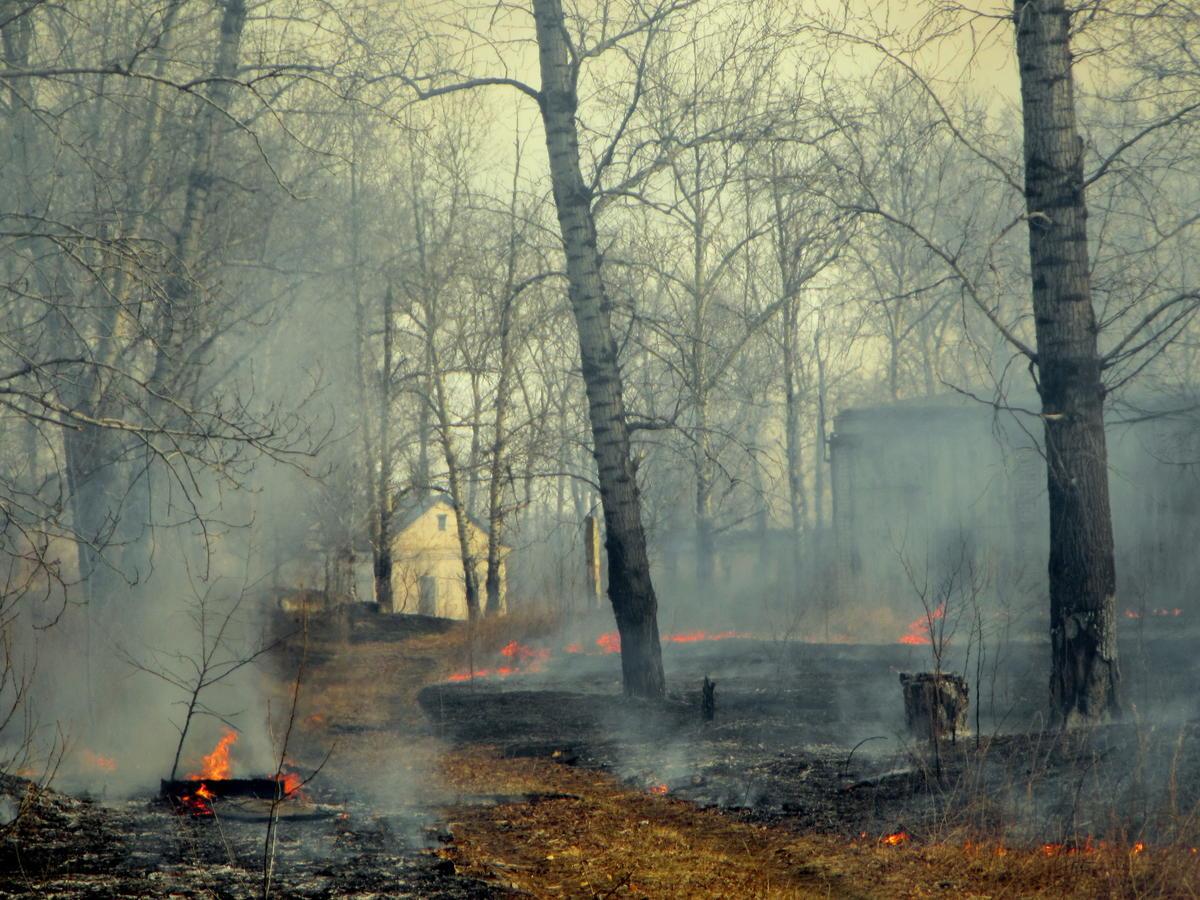 Fires in Amur region, Russia © Maria Vasilieva / Greenpeace