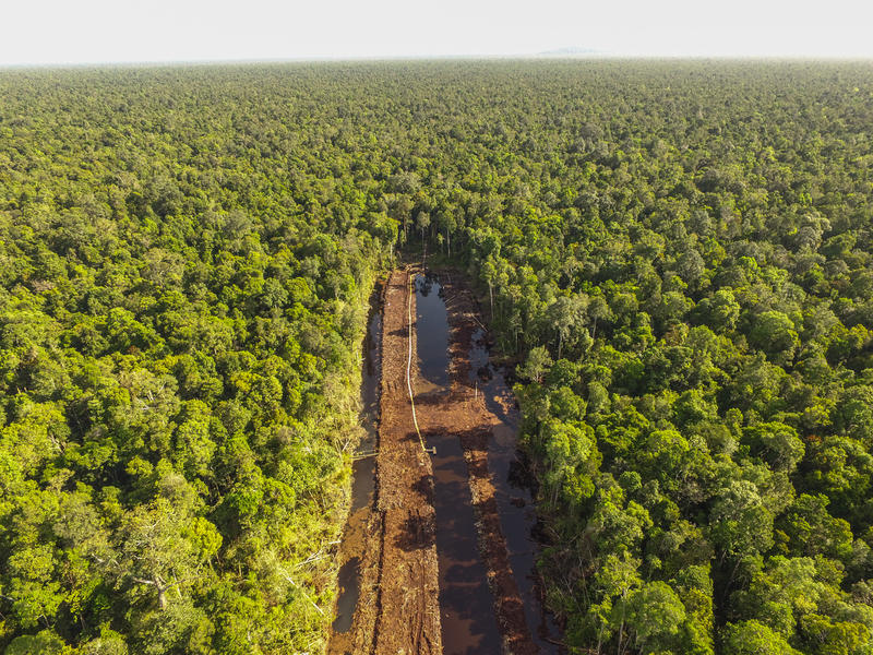 Drone image shows a canal in Sungai Putri forest © Greenpeace