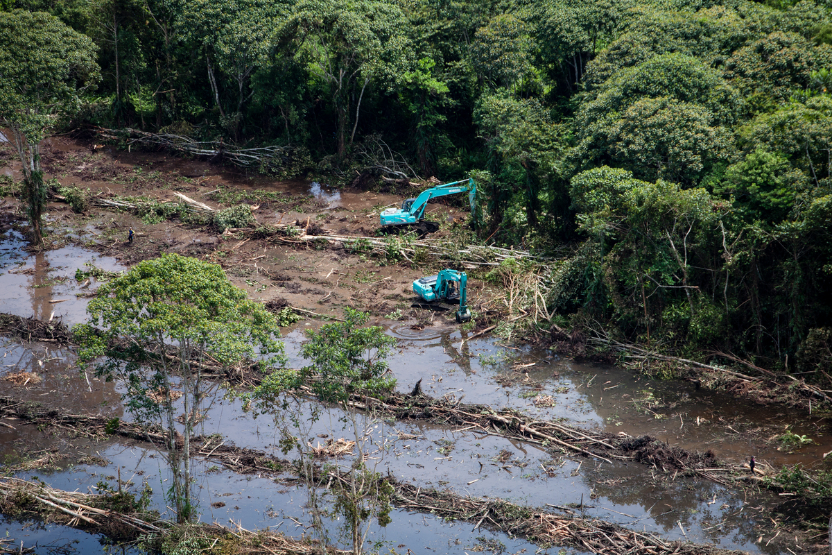 Deforestation for Palm Oil by Bumitama in Indonesia © Kemal Jufri / Greenpeace