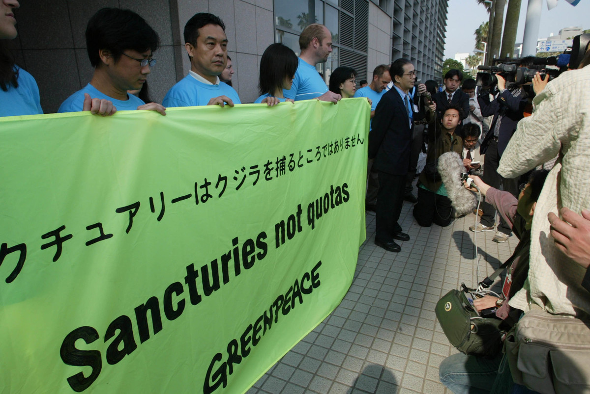 © Greenpeace / Hiroto Kiryu
