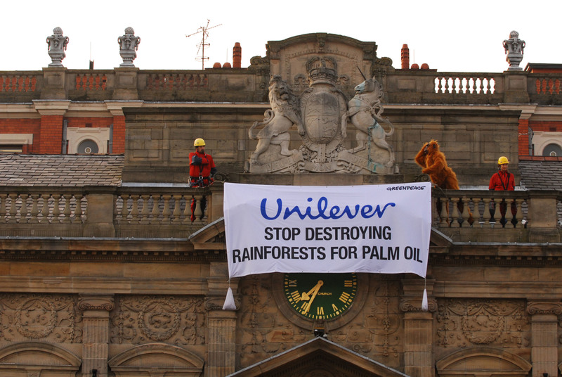 © Will Rose / Greenpeace