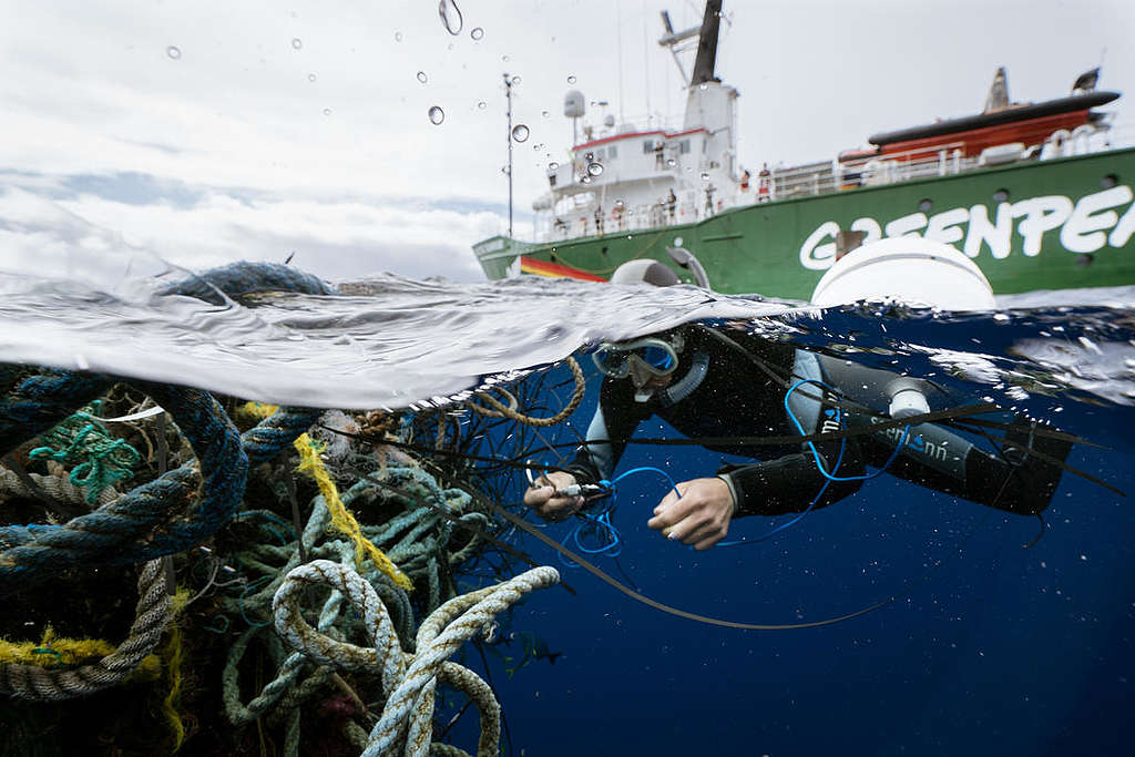 Ghost fishing nets in the Great Pacific Garbage Patch © Justin Hofman / Greenpeace
