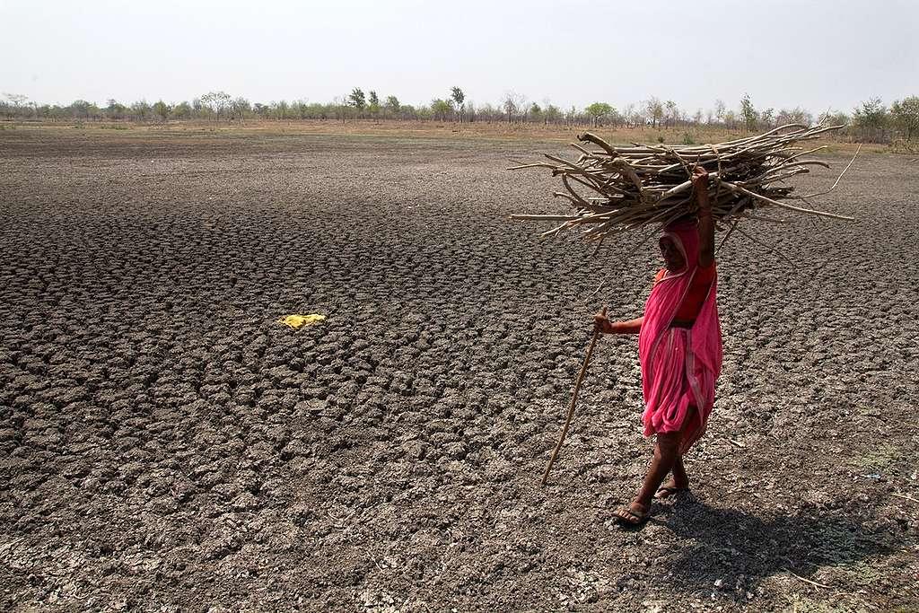 Drought in Maharashtra, India © Subrata Biswas / Greenpeace