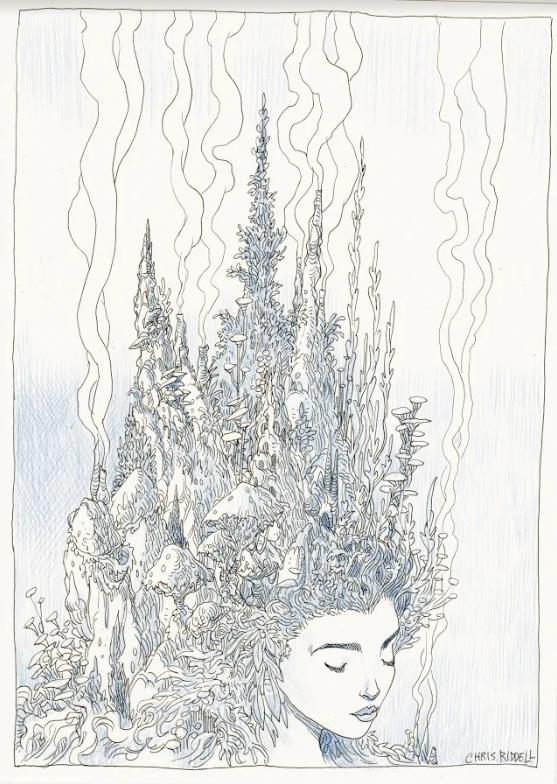 Chris Riddell's artwork