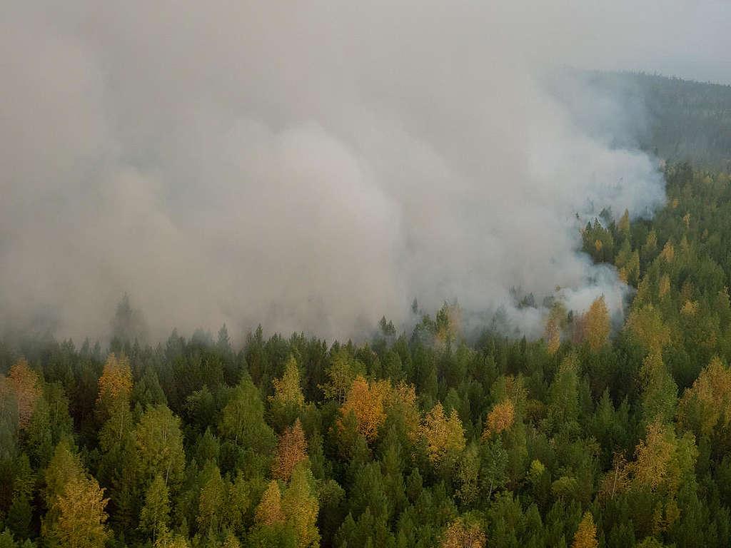 Forest Fires near Irkutsk Region in Russia © Igor Podgorny / Greenpeace