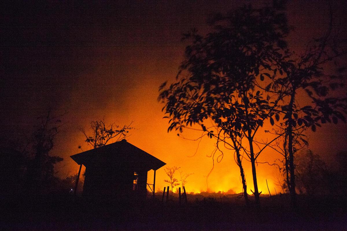 Forest Fires in Central Kalimantan. © Jurnasyanto Sukarno / Greenpeace