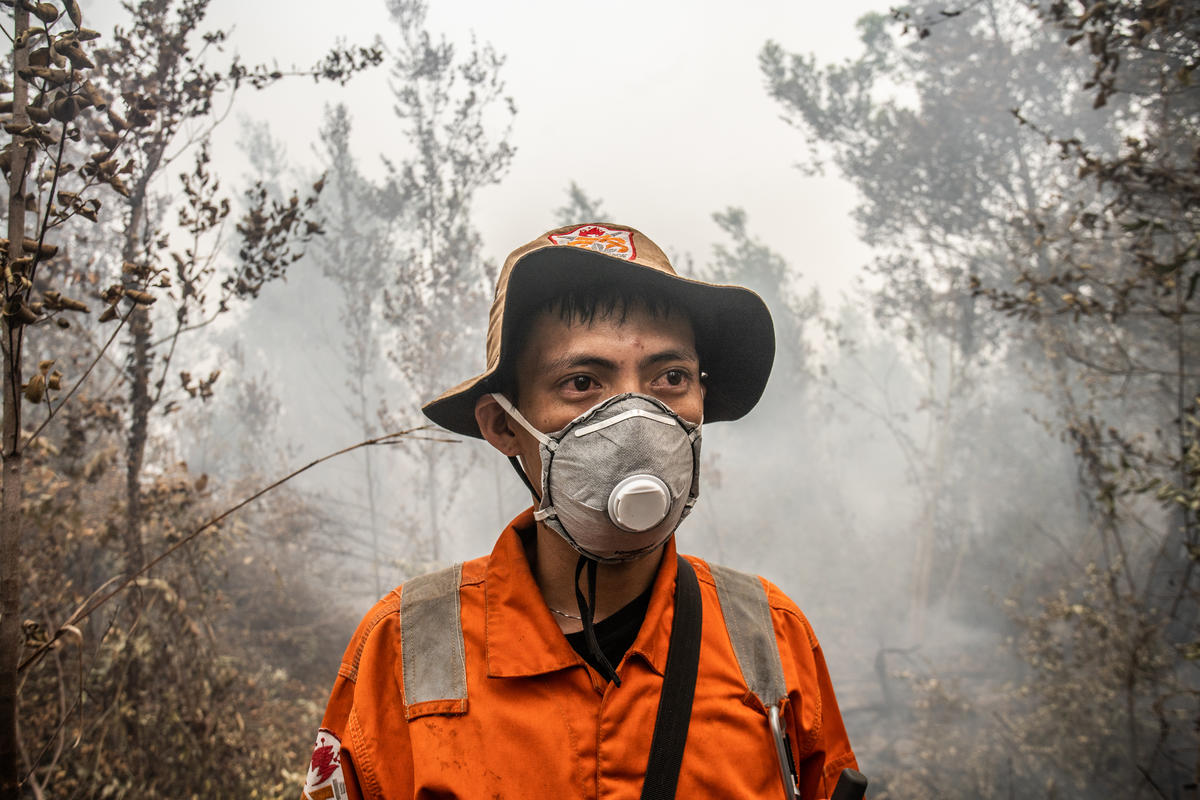 Forest Fires Investigation at PT GAL Concession in Central Kalimantan. © Jurnasyanto Sukarno / Greenpeace