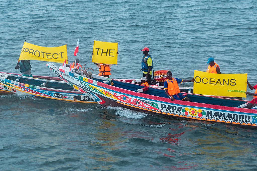 Local Fishermen Activity in Dakar. © Pape Diatta Sarr / Greenpeace